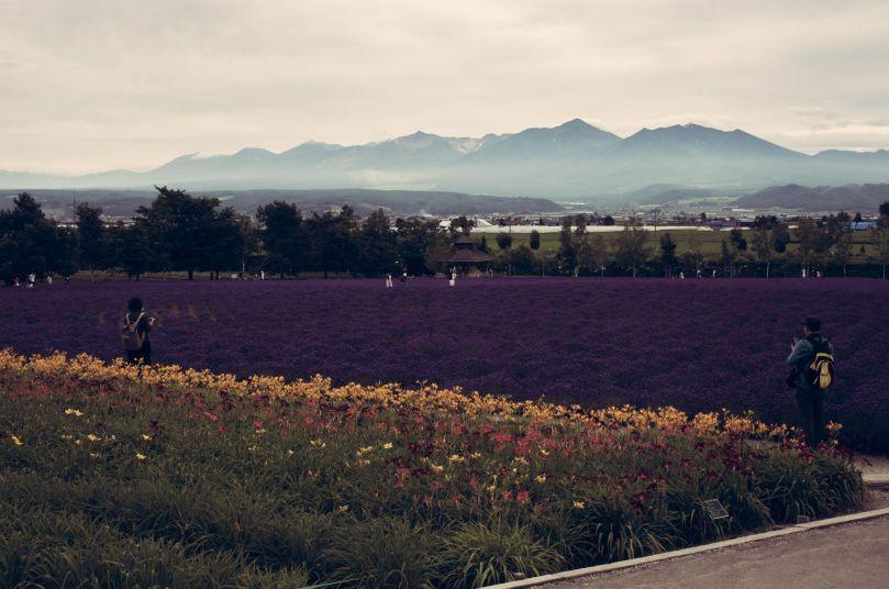 Hokkaido2